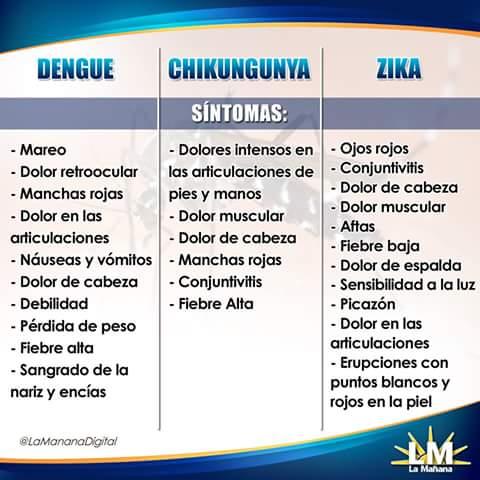 ZICA DENGUE Y CHIKUNGUNYA